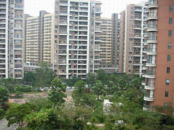 2020东莞的房价怎么了?