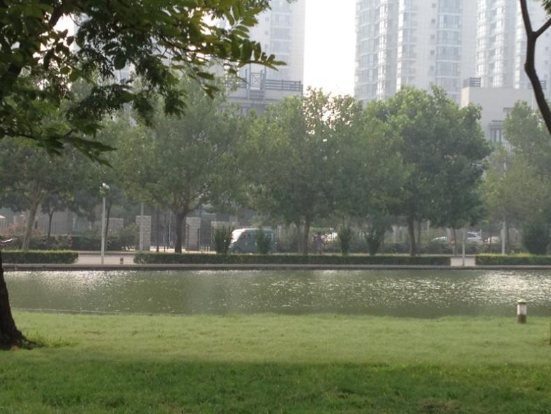近两年天津房价走势分析
